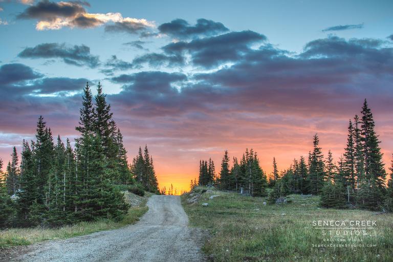 SenecaCreekStudios.com by Allison Pluda | Fine Art Nature and Portrait Photography | Laramie, Wyoming |